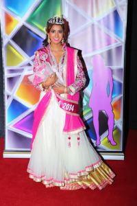 Miss India USA 2014